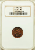 Proof Indian Cents, 1902 1C PR65 Red NGC. NGC Census: (26/22). PCGS Population: (50/39). CDN: $950 Whsle. Bid for problem-free NGC/PCGS PR65. M...