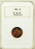 Proof Indian Cents, 1881 1C PR65 Red NGC....