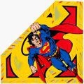 Animation Art:Poster, Superman Limited Edition (1 of 100) Silkscreen on Canvas,Signed Steve Kaufman (1960-2010). ...