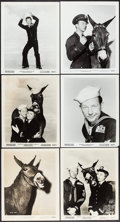 """Movie Posters:Comedy, Francis in the Navy & Others Lot (Universal International, 1955). Photos (100+) (Approx. 8"""" X 10""""). Comedy.. ... (Total: 100 Items)"""