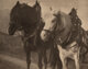 Alfred Stieglitz (American, 1864-1946) Scurrying Home; Horses; Miss S.R. (three works), 1894; 1904; 1904 Photogravures...