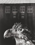 Photographs:Gelatin Silver, Jerry Uelsmann (American, b. 1934). Bless our home & eagle, 1962. Gelatin silver, 1972. 13-1/4 x 10-1/4 inches (33.7 x 2...