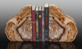 Fossils:Paleobotany (Plants), Petrified Wood Bookends. 16.50 x 10.75 x 1.50 inches (41.91 x 27.31 x 3.81 cm). ... (Total: 2 Items)