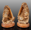 Minerals:Decorative, Agatized Coral Pair. Florida, USA. 13.00 x 7.00 x 5.00 inches (33.02 x 17.78 x 12.... (Total: 2 Items)