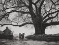 Photographs:Gelatin Silver, Gordon Converse (American, 1921-1999). Nepalese walk under huge tree in mountains, Pokhara, Nepal, 1964. Gelatin silver...