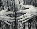 Photographs, Wynn Bullock (American, 1902-1975). Pebble Beach Forest #3 and Woman's Hands (two photographs), 1969; 1956. Gelatin ... (Total: 2 Items)