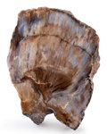 Lapidary Art:Carvings, Agatized Baryte. Henry Mountains. Utah, USA. 4.67 x 3.33 x 2.20inches (11.85 x 8.45 x 5.59 cm). ...