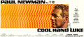 "Movie Posters:Drama, Cool Hand Luke (Warner Brothers, 1967). 24 Sheet (104"" X 232"")....."