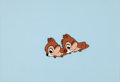 Animation Art:Production Cel, Chip 'n Dale Production Cel (Walt Disney, c. 1950s)....