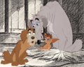 Animation Art:Production Cel, Lady and the Tramp Pound Dogs Production Cel (Walt Disney,1955)....