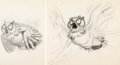 Animation Art:Concept Art, Bambi Friend Owl Concept Drawing (Walt Disney, 1942)....