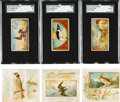 "Non-Sport Cards:Lots, 1889-90 Allen & Ginter N13, N40 ""Game Birds"" and N23, N42 ""SongBirds Of The World"" Collection (32). ..."