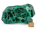 Minerals:Cabinet Specimens, Malachite. Katanga Copper Crescent. Katanga (Shaba). DemocraticRepublic of Congo (Zaïre). 5.71 x 2.76 x 4.02 inches (14.5...