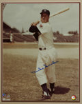 """Autographs:Photos, Duke Snider Signed Large Photograph. Enormous (16x20"""") photo of theBrooklyn Dodgers' Hall of Fame center fielder is signed..."""