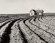 Dorothea Lange (American, 1895-1965) Tractored Out, 1930s Gelatin silver, printed circa 1960 7-1/2 x 9-1/2 inches (19