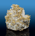 Minerals:Golds, Crystalline Gold on Quartz. 16 to 1 Mine (Sixteen-to-One Mine; Original Sixteen-to-One Mine). Alleghany, Alleghany Dis...