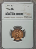 Proof Indian Cents, 1899 1C PR66 Red NGC....