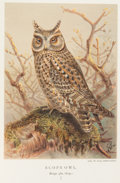 Books:Natural History Books & Prints, Lord [Thomas Lyttelton Powys] Lilford. Coloured Figures of the Birds of the British Islands. London: R. H. Porter, 1... (Total: 8 Items)
