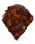 Lapidary Art:Carvings, Orbicular Jasper. Rio Grande do Sul. Brazil. 3.06 x 2.98 x 0.22inches (7.77 x 7.56 x 0.57 cm). ...