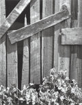 Photographs, Ansel Adams (American, 1902-1984). Boards and Thistles, San Francisco, California, 1932. Gelatin silver, 1976. 19-3/8 x ...