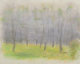 Wolf Kahn (American, b. 1927) Tree Circle, 2002 Pastel on paper 13-1/2 x 16-7/8 inches (34.3 x 42.9 cm) (sheet) Sign