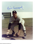 Autographs:Photos, Chicago White Sox Signed Photographs Lot of 40. Decades of WhiteSox talent is represented here by such stars as Cuccinello...