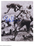 Football Collectibles:Others, Gale Sayers & Walter Payton Signed Photographs. Great pair of photographs from this duo of Chicago Bears Hall of Fame runne...