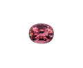 Gems:Faceted, Gemstone: Tourmaline - 9.14 Cts.. Mozambique. ...