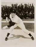 Baseball Collectibles:Photos, Early 1950's Whitey Ford Original News Photograph Used for his 1953& 1954 Topps Cards, PSA/DNA Type 1....