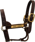 Miscellaneous Collectibles:General, 1990's Skip Away Halter Signed by Jerry Bailey....