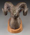 Fine Art - Sculpture, American, Clark Everice Bronson (American, b. 1939). Ram Bust, 1970.Bronze with brown patina. 8-1/2 inches (21.6 cm) high on a 1 ...