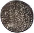 Colonials: , 1662 2PENCE Oak Tree Twopence AU53 PCGS. Small Date. Crosby 1-A2, Noe-30, R.4. 10.8 grains. Small die break from base of 2 ...