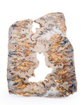 Lapidary Art:Carvings, Graveyard Plume Agate. Graveyard Point Plume. OwyheeMountains. Oregon, USA. 11.81 x 9.37 x 0.79 inches(30.00...