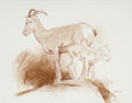 Fine Art - Work on Paper, Ken Carlson (American, b. 1937). Bighorn Ewe and Lamb. Contecrayon on paper. 11-1/4 x 14 inches (28.6 x 35.6 cm). Signe...