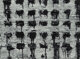 Aaron Siskind (American, 1903-1991) Chicago 42, 1952 Gelatin silver 16 x 21-3/4 inches (40.6 x 55.2 cm) Signed, titl