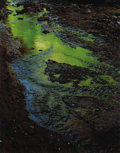 Photographs:20th Century, ELIOT PORTER (American 1901-1990). Green Reflections in Stream,Moki Canyon Creek, Glen Canyon, Utah, September 2, 1962,...