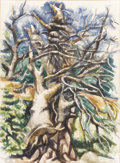 Texas:Early Texas Art - Modernists, LOREN MOZLEY (1905-1989). Broken Cypress. Watercolor onpaper. 30 x 22 inches (76.2 x 55.9 cm). Signed lower right. Titl...