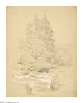 American:Hudson River School, JOHN HENRY HILL (American 1839-1922). Scotch Fir and Spruce. Penciland gouache on paper. 13.5 x 10.75in.. Signed lower righ...