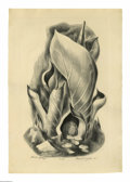 Texas:Early Texas Art - Drawings & Prints, Deforrest Judd (1916-1993) Skunk Cabbage, 1923 Lithograph 13 x 181/2in. Signed lower right: Deforrest Judd '41 ...