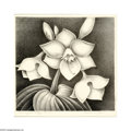 Texas:Early Texas Art - Drawings & Prints, Verda Ligon Plantation Lily, ed.10 Lithograph 12 x 12in. Signedlower right This lithograph is still mounted in the s...