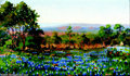 Texas:Early Texas Art - Impressionists, Carl Hoppe (1871-1970) Bluebonnets, 1926 Oil on canvas 11 x 181/2in. Signed lower right: C. Hoppe 26 Provenance: E...