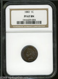 Proof Indian Cents: , 1883 1C PR67 Brown NGC. Iridescent aqua-blue toning that dominates the central areas transitions into crimson coloration ar...