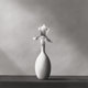 Robert Mapplethorpe (American, 1946-1989) Orchid, 1982 Gelatin silver 15-1/8 x 15-1/8 inches (38.4 x 38.4 cm) Signed