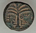"Ancients:Judaea, Ancients: JUDAEA. Bar Kochba Revolt (AD 132-135). AE ""small bronze""(5.46 gm). About XF, repatinated...."