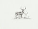 Robert E. Lougheed (American, 1910-1982) Deer Ink on board 6 x 8 inches (15.2 x 20.3 cm) Initialed lower right: RE