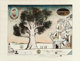 Saul Steinberg (1914-1999) Tree Bauhaus (variant), 1968 Lithograph with collage, watercolor, and handcoloring on paper...