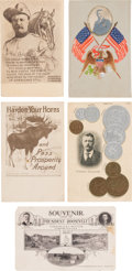 Political:Small Paper (1896-present), Theodore Roosevelt: Five Exceptional Postcards. ... (Total: 5 Items)
