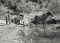 Photographs, Marion Post Wolcott (American, 1910-1990). On Assignment up Creek Bed, Kentucky River, circa 1940. Gelatin silver, print...