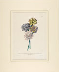Books:Natural History Books & Prints, Planson, W.H. Fitch. Group of Ten Antique Hand-Colored Botanical Prints. c. 1845-1862.... (Total: 10 Items)