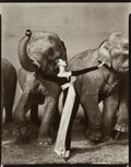 Photographs:Gelatin Silver, Richard Avedon (American, 1923-2004). Dovima with Elephants,Evening Dress by Dior, Cirque d'Hiver, Paris, 1955. Gelatin...